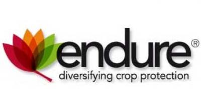 Image of Endure logo