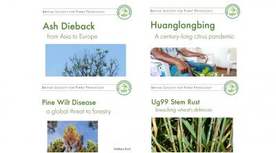 Front covers of BSPP plant pandemic reports