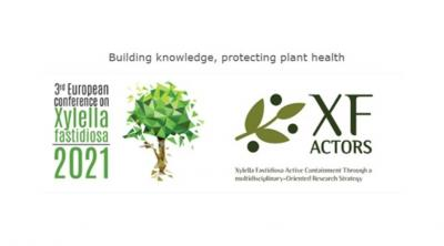 Logos of conference and XF-ACTORS